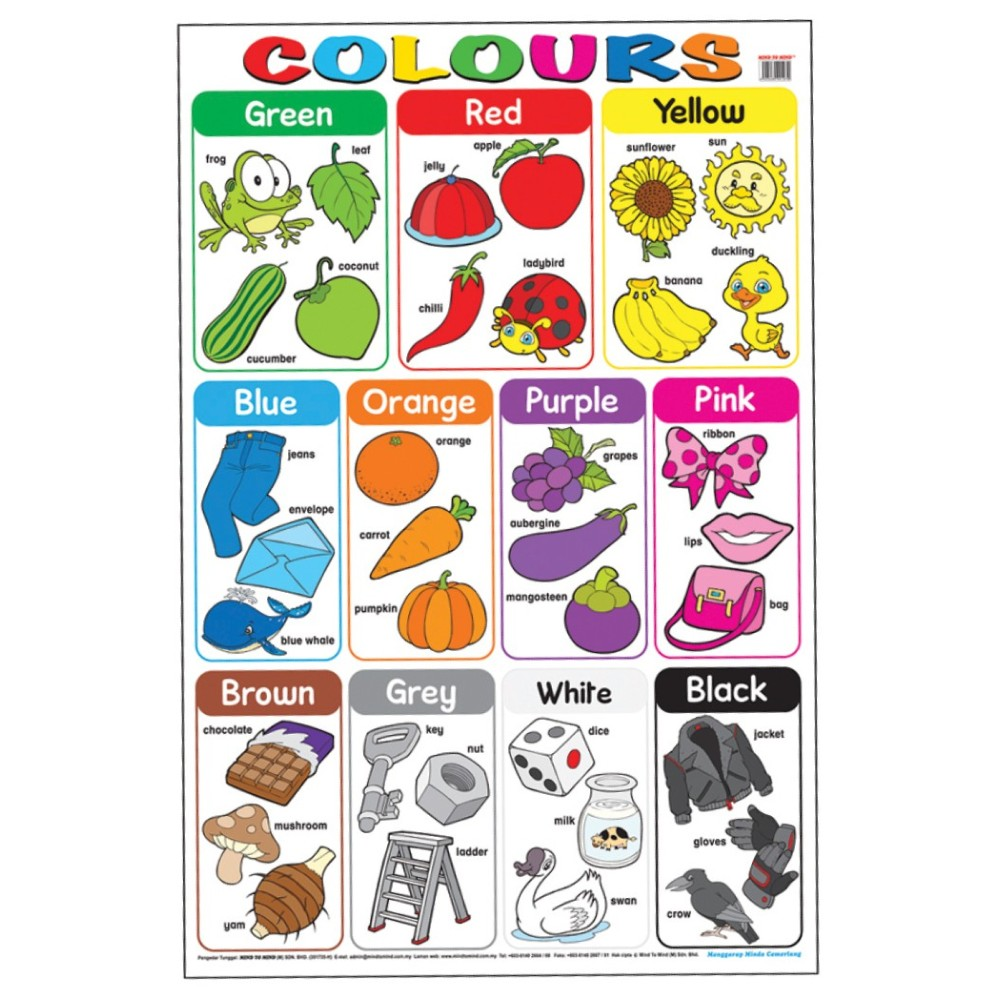 Educational Chart Colours (MM01270)